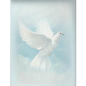 White Wings Funeral Home And Cremations Erie PA
